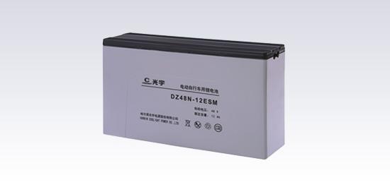 DZ48N-12ESM